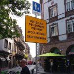 Downtown, le collectif qui met des couleurs dans les rues de Strasbourg