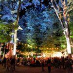 Gagnez vos places pour le festival Summerlied !